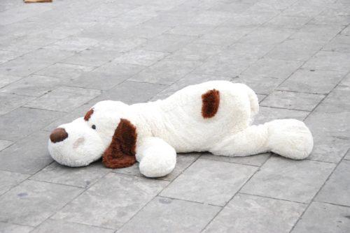 道端に置かれた犬のぬいぐるみ
