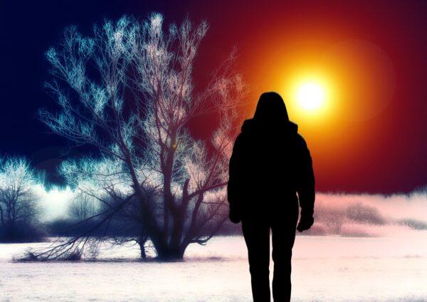 枯れた大木の傍でたたずむ女性の影